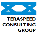 Teraspeed Consulting Group LLC